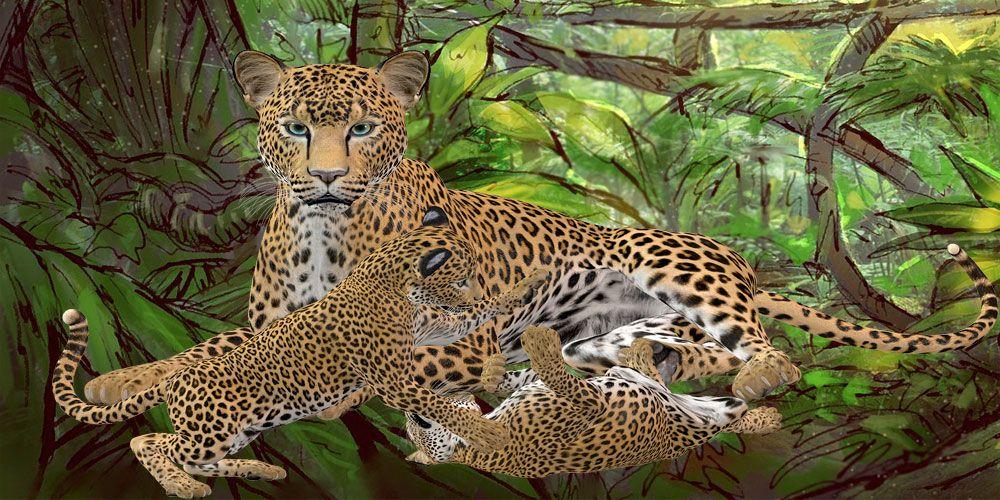 Leyenda africana Las lágrimas del guepardo