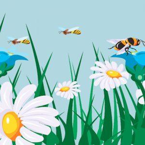 La mariposa y las abejas. Fábula sobre la generosidad para los niños