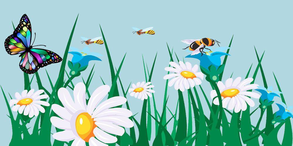 La mariposa y las abejas: una fábula sobre la generosidad