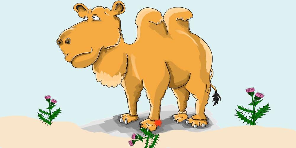 El camello cojito, poesía de Gloria Fuertes para niños