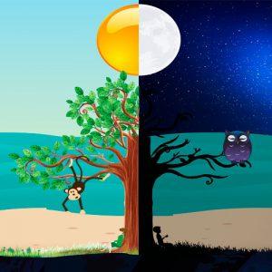 El cuento de la noche. Leyenda de Brasil para niños