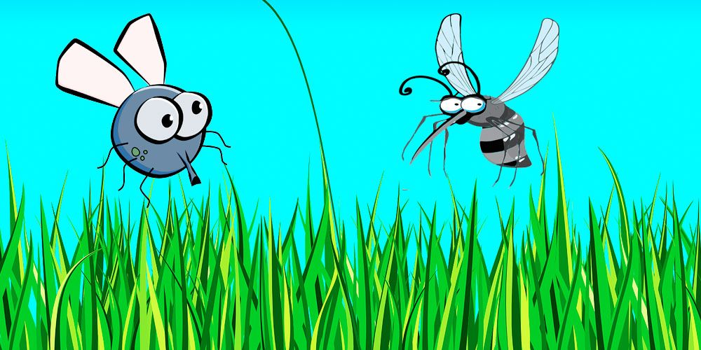 Poesías cortas de Gloria Fuertes para niños: La mosca y el mosquito