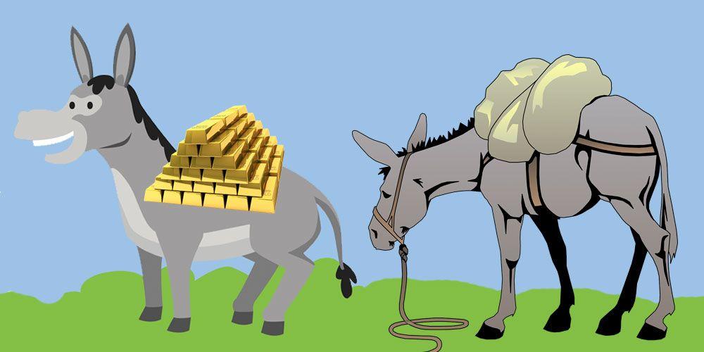 Fábula corta con valores para niños: Las mulas de carga