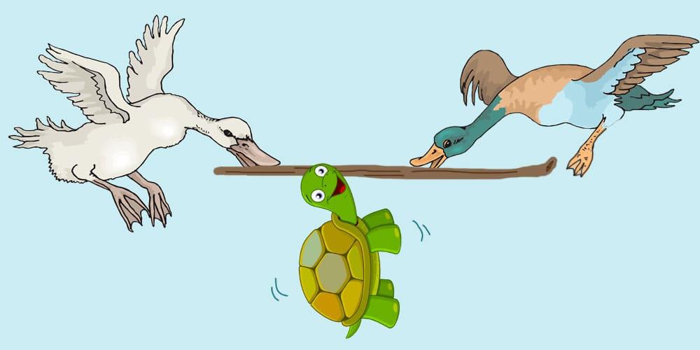 Fábula infantil sobre la vanidad: los patos y la tortuga