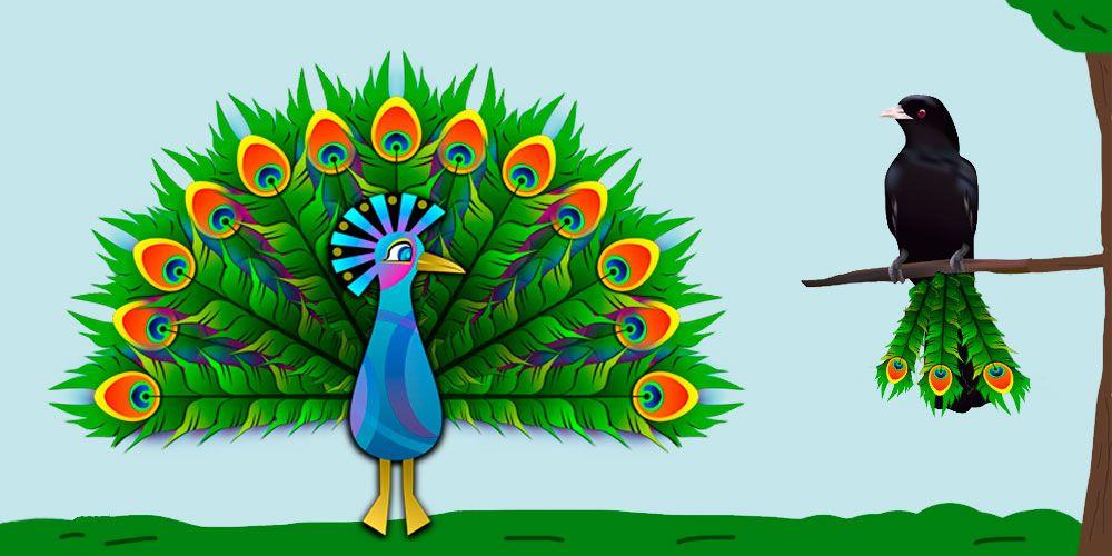Fábula de Esopo sobre la autoestima: El cuervo orgulloso