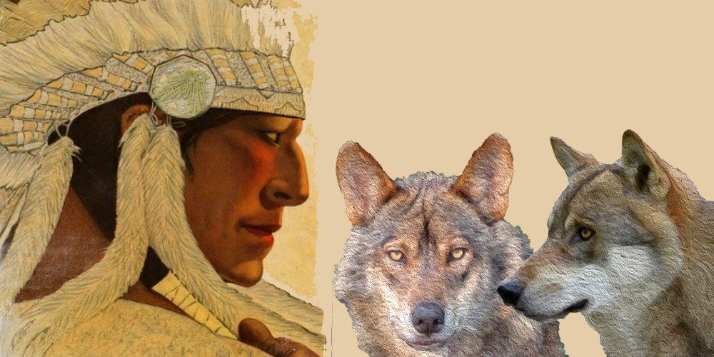 Leyenda de animales: Los dos lobos que luchan