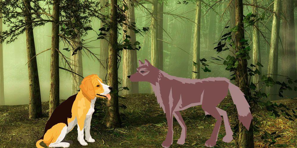 Fábula el lobo y el perro para niños