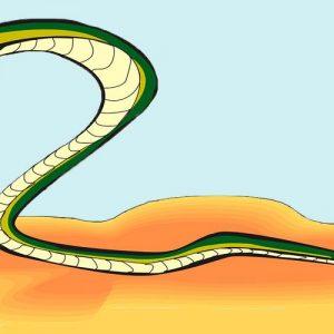 El sabio y la serpiente. Fábula sobre la necesidad de defendernos para niños