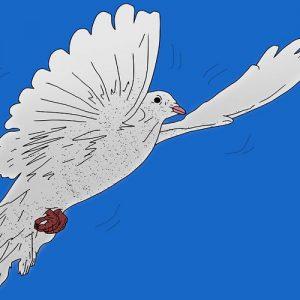 El obsequio de las palomas. Fábula china con valores