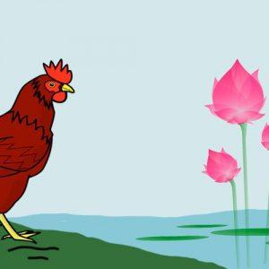 La rana y la gallina. Fábula con valores para niños