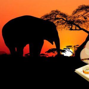 Cuentos y leyendas de África fascinantes