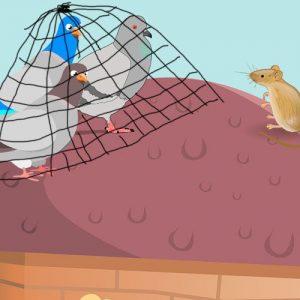 Las palomas y el ratón. Fábula corta sobre la obediencia y la responsabilidad